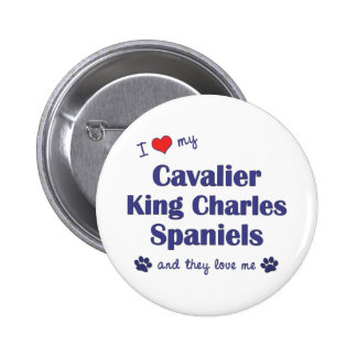 I Love My Cavalier King Charles (Multiple Dogs) Pinback Button