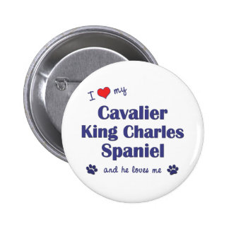 I Love My Cavalier King Charles Spaniel (Male Dog) Pinback Button
