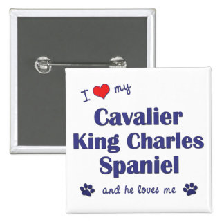I Love My Cavalier King Charles Spaniel Male Dog Pinback Button