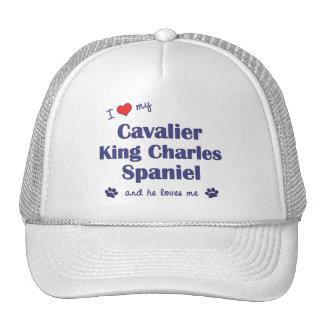 I Love My Cavalier King Charles Spaniel (Male Dog) Mesh Hats