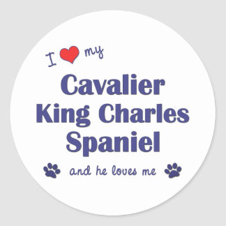 I Love My Cavalier King Charles Spaniel (Male Dog) Round Sticker