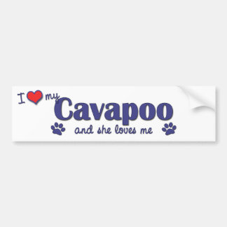 I Love My Cavapoo (Female Dog) Bumper Sticker