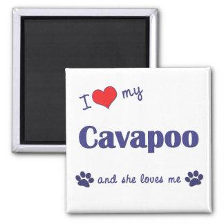 I Love My Cavapoo (Female Dog) Magnet