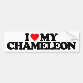 I LOVE MY CHAMELEON BUMPER STICKER