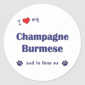 I Love My Champagne Burmese (Male Cat) Round Sticker
