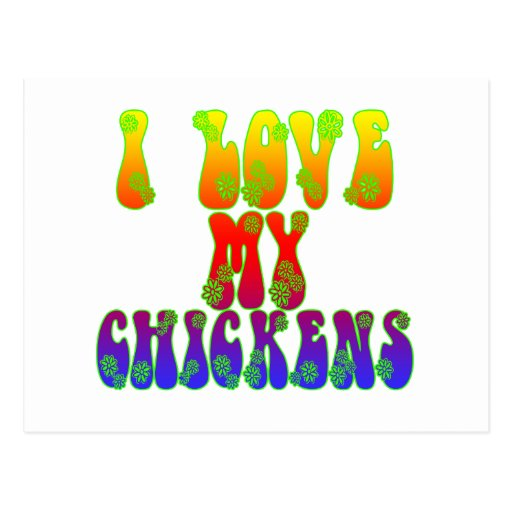 I Love My Chickens Postcard