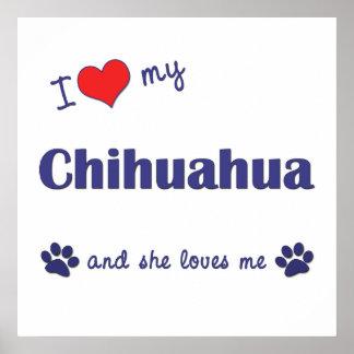 I Love My Chihuahua (Female Dog) Poster