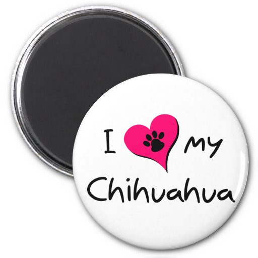 I Love my Chihuahua Magnets