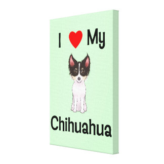 I Love My Chihuahua (picture) Stretched Canvas Prints