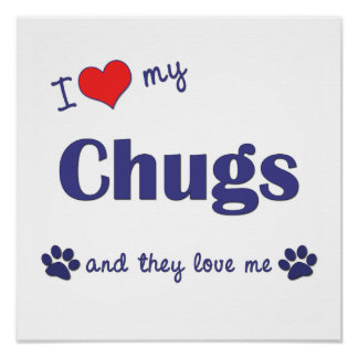 I Love My Chugs (Multiple Dogs) Poster Print