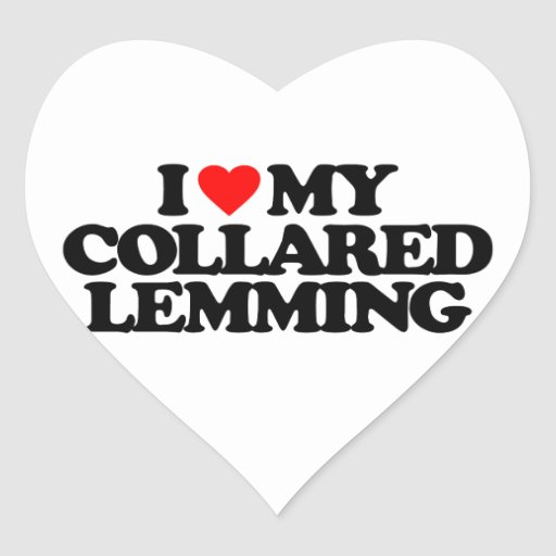 I LOVE MY COLLARED LEMMING STICKERS