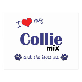 I Love My Collie Mix (Female Dog) Postcard
