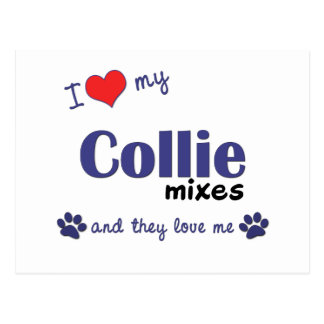 I Love My Collie Mixes (Multiple Dogs) Postcard