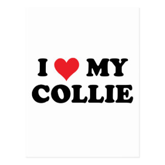 I Love My Collie Postcard