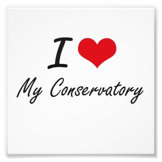 I love My Conservatory Photographic Print