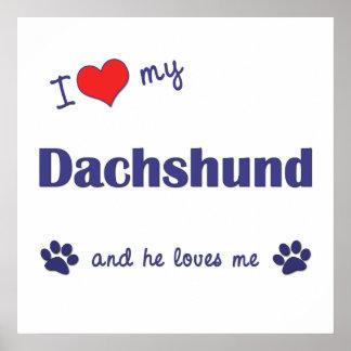 I Love My Dachshund Male Dog Print