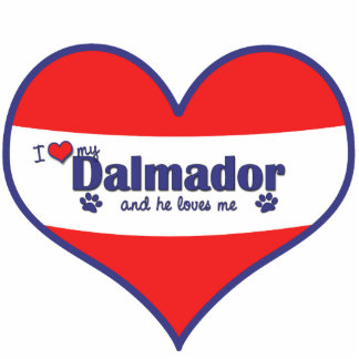 I Love My Dalmador (Male Dog) Photo Sculpture Decoration