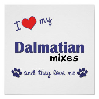 I Love My Dalmatian Mixes (Multi Dog) Poster Print