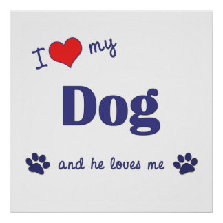 I Love My Dog Male Dog Poster