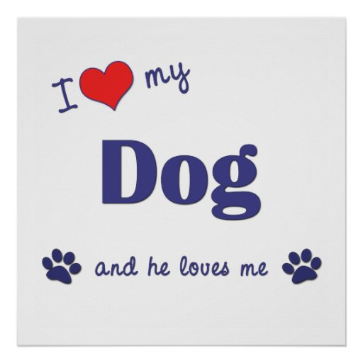 I Love My Dog (Male Dog) Poster