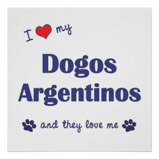 I Love My Dogos Argentinos (Multiple Dogs) Print