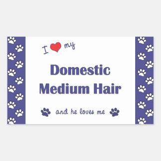 I Love My Domestic Medium Hair (Male Cat) Stickers