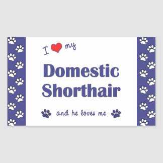 I Love My Domestic Shorthair (Male Cat) Stickers