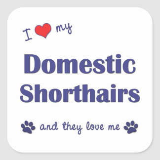 I Love My Domestic Shorthairs Multiple Cats Square Stickers