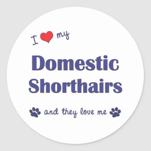 I Love My Domestic Shorthairs (Multiple Cats) Round Sticker