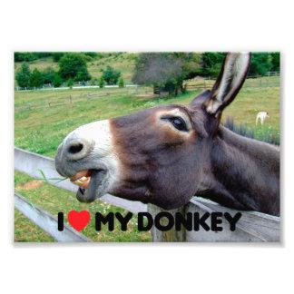 I Love My Donkey Funny Mule Farm Animal Art Photo