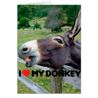 I Love My Donkey Funny Mule Farm Animal Card