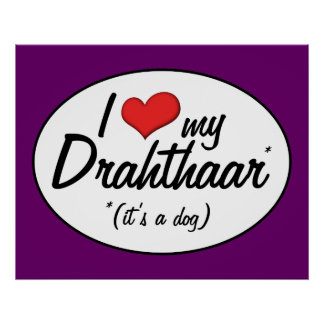 I Love My Drahthaar (It's a Dog) Poster