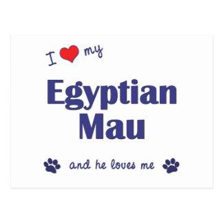 I Love My Egyptian Mau (Male Cat) Postcard