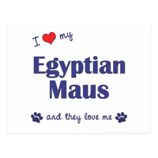 I Love My Egyptian Maus (Multiple Cats) Postcard