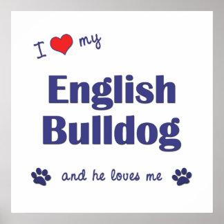 I Love My English Bulldog (Male Dog) Poster