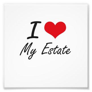 I love My Estate Photo Print