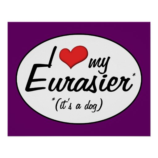 I Love My Eurasier (It's a Dog) Poster