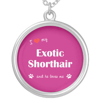 I Love My Exotic Shorthair (Male Cat) Necklace