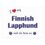 I Love My Finnish Lapphund (Female Dog) Postcard