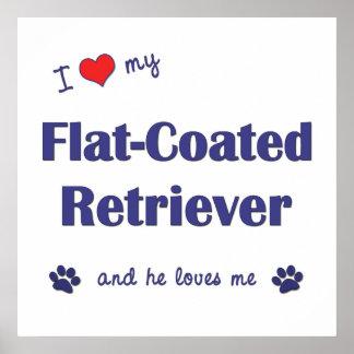 I Love My Flat-Coated Retriever (Male Dog) Poster