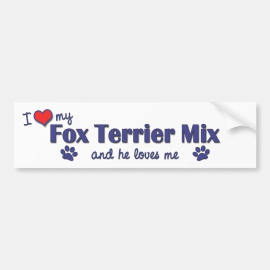 I Love My Fox Terrier Mix (Male Dog) Bumper Sticker