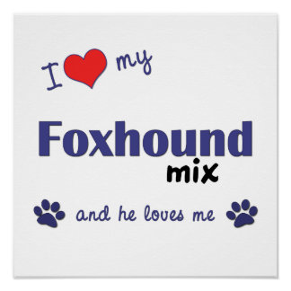 I Love My Foxhound Mix (Male Dog) Poster Print