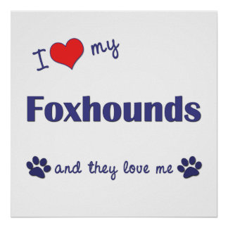 I Love My Foxhounds Multiple Dogs Print