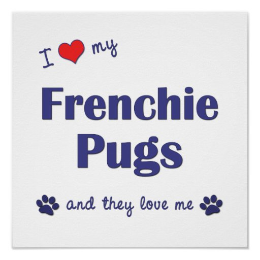 I Love My Frenchie Pugs (Multi Dogs) Poster Print