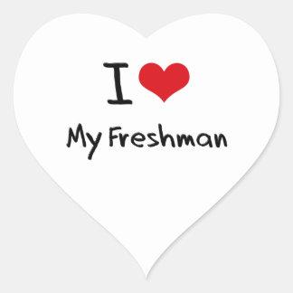 I Love My Freshman Heart Stickers