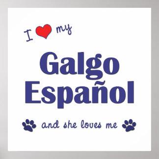 I Love My Galgo Espanol (Female Dog) Poster