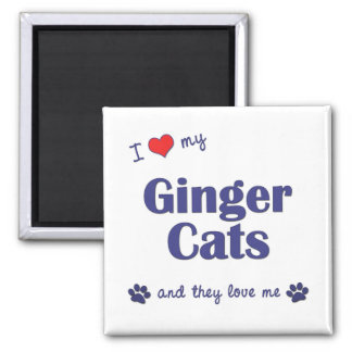 I Love My Ginger Cats (Multiple Cats) Magnet