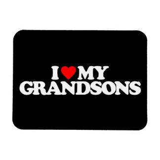 I LOVE MY GRANDSONS MAGNET