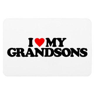 I LOVE MY GRANDSONS VINYL MAGNET