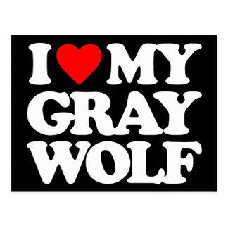 I LOVE MY GRAY WOLF POSTCARDS